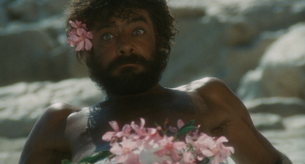 Swept Away | Events | Coral Gables Art Cinema