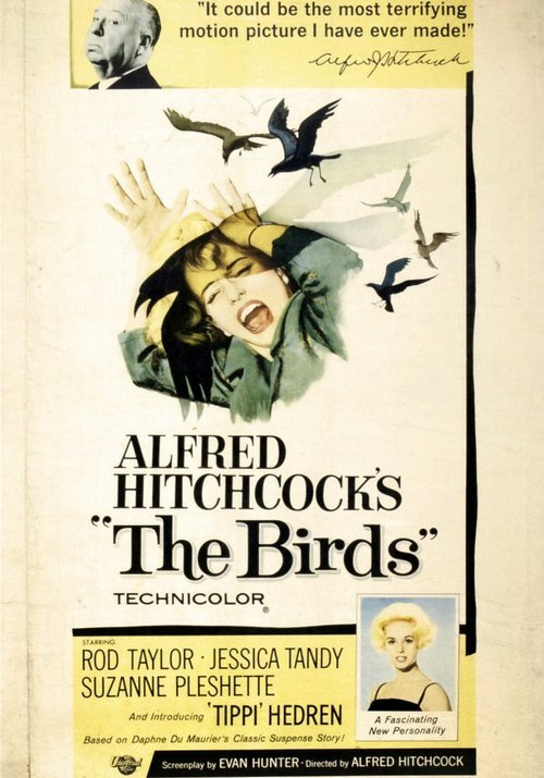 an analysis of the birds by alfred hitchcock The cinematic man of the year, at least in prominence, is alfred hitchcock not only was his vertigo named the best film of all time in the decennial sight and sound poll but he's the.